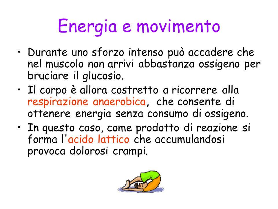 Energia e movimento Durante uno sforzo intenso può accadere che nel muscolo non arrivi abbastanza ossigeno per bruciare il glucosio. Il corpo è allora