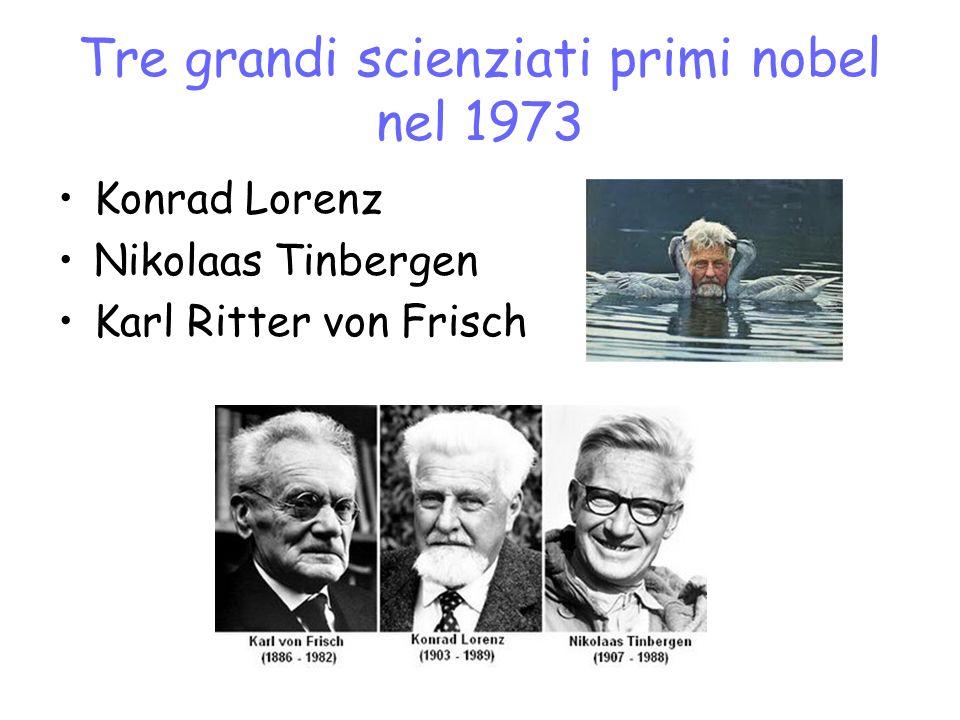 Tre grandi scienziati primi nobel nel 1973 Konrad Lorenz Nikolaas Tinbergen Karl Ritter von Frisch