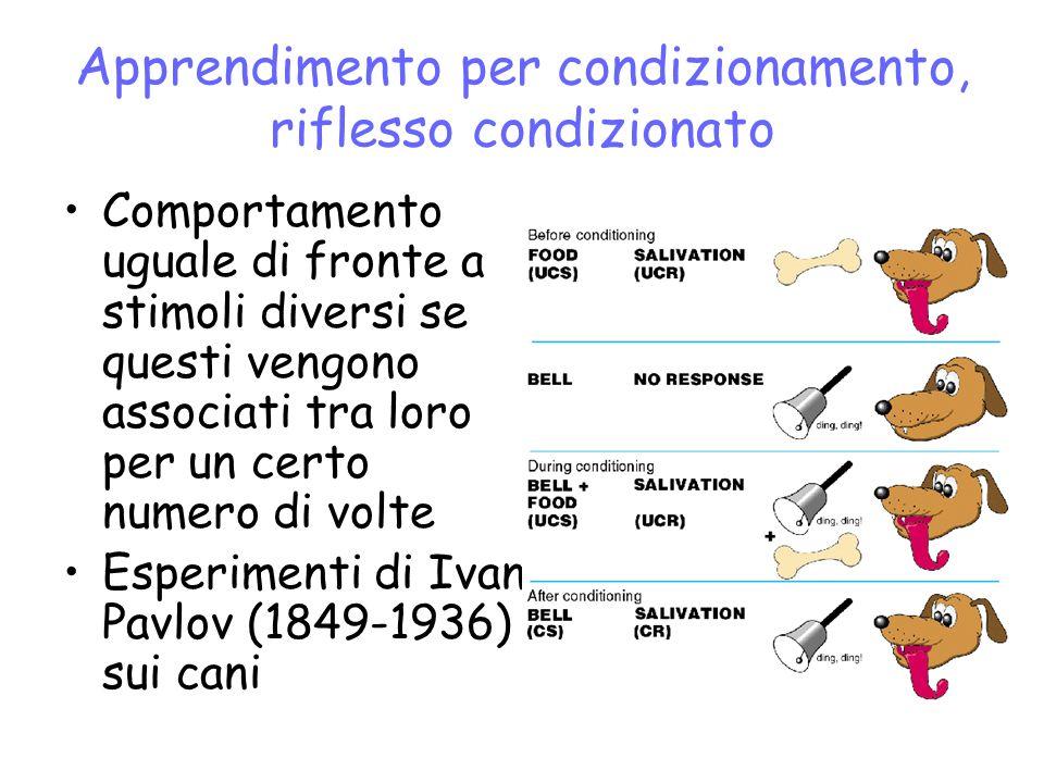 Apprendimento per condizionamento, riflesso condizionato Comportamento uguale di fronte a stimoli diversi se questi vengono associati tra loro per un certo numero di volte Esperimenti di Ivan Pavlov (1849-1936) sui cani