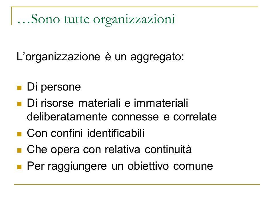 …Sono tutte organizzazioni Lorganizzazione è un aggregato: Di persone Di risorse materiali e immateriali deliberatamente connesse e correlate Con confini identificabili Che opera con relativa continuità Per raggiungere un obiettivo comune