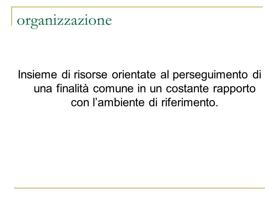 organizzazione Insieme di risorse orientate al perseguimento di una finalità comune in un costante rapporto con lambiente di riferimento.