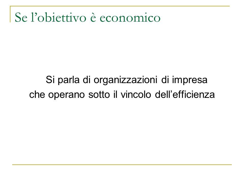 Se lobiettivo è economico Si parla di organizzazioni di impresa che operano sotto il vincolo dellefficienza