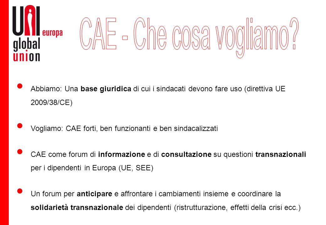 Abbiamo: Una base giuridica di cui i sindacati devono fare uso (direttiva UE 2009/38/CE) Vogliamo: CAE forti, ben funzionanti e ben sindacalizzati CAE come forum di informazione e di consultazione su questioni transnazionali per i dipendenti in Europa (UE, SEE) Un forum per anticipare e affrontare i cambiamenti insieme e coordinare la solidarietà transnazionale dei dipendenti (ristrutturazione, effetti della crisi ecc.)