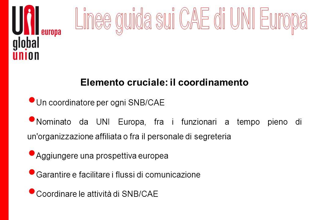 Elemento cruciale: il coordinamento Un coordinatore per ogni SNB/CAE Nominato da UNI Europa, fra i funzionari a tempo pieno di un'organizzazione affil