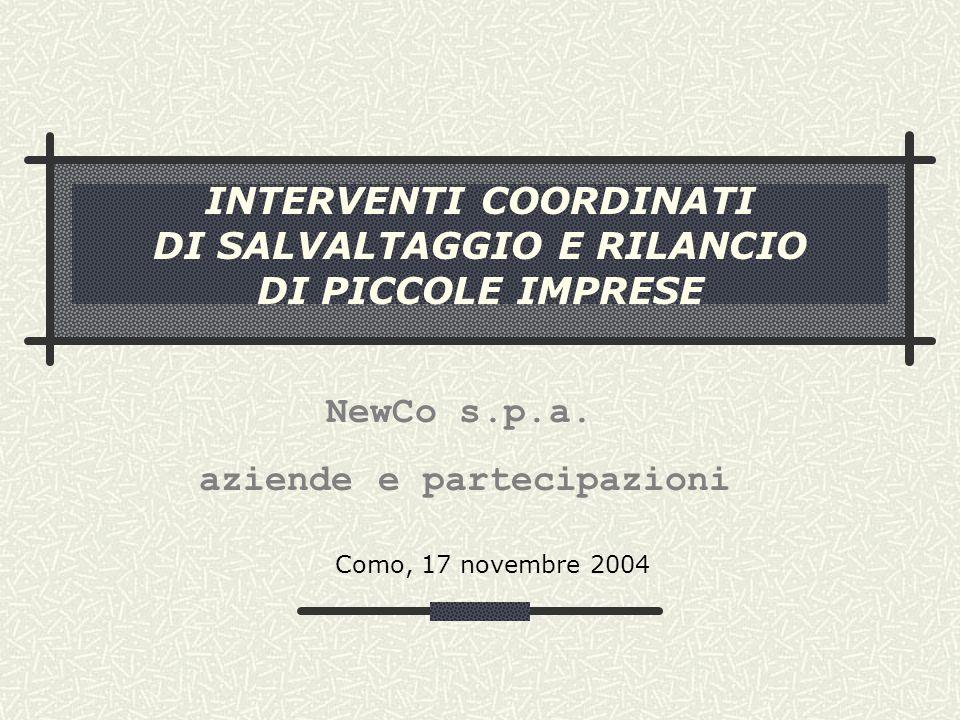 INTERVENTI COORDINATI DI SALVALTAGGIO E RILANCIO DI PICCOLE IMPRESE Como, 17 novembre 2004 NewCo s.p.a.