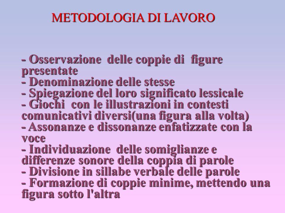 METODOLOGIA DI LAVORO - Osservazione delle coppie di figure presentate - Denominazione delle stesse - Spiegazione del loro significato lessicale - Gio
