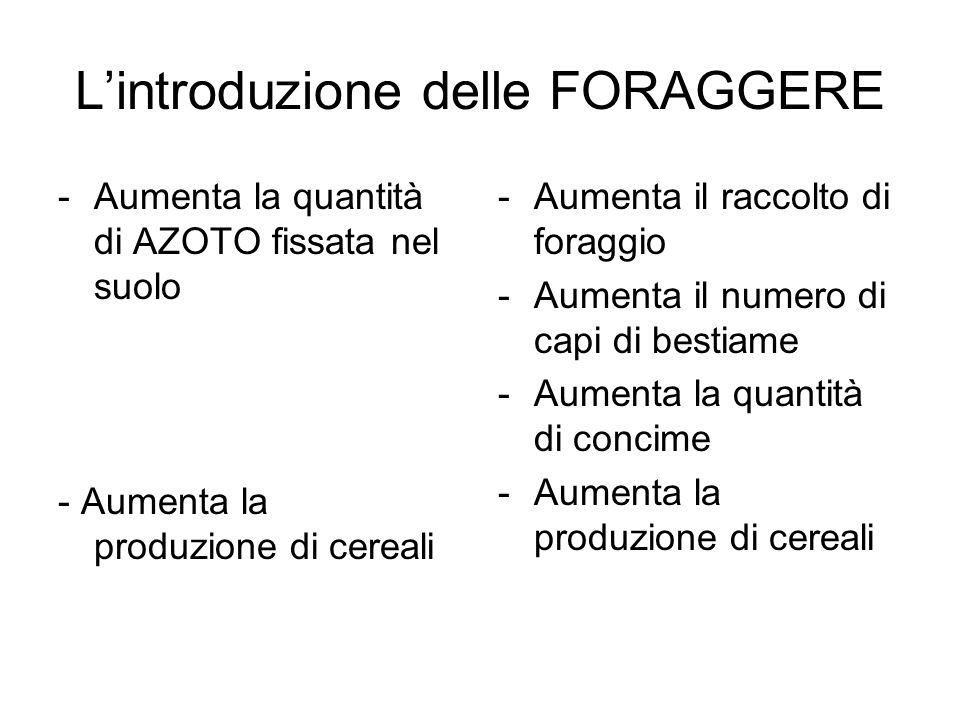 Lintroduzione delle FORAGGERE -Aumenta la quantità di AZOTO fissata nel suolo - Aumenta la produzione di cereali -Aumenta il raccolto di foraggio -Aum