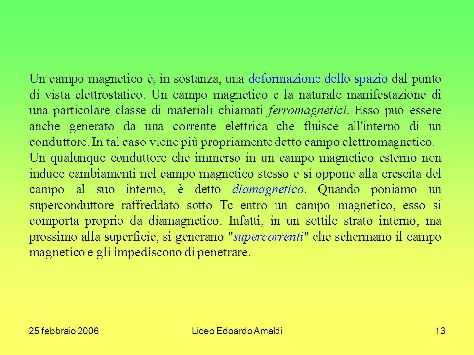 25 febbraio 2006Liceo Edoardo Amaldi13 Un campo magnetico è, in sostanza, una deformazione dello spazio dal punto di vista elettrostatico. Un campo ma