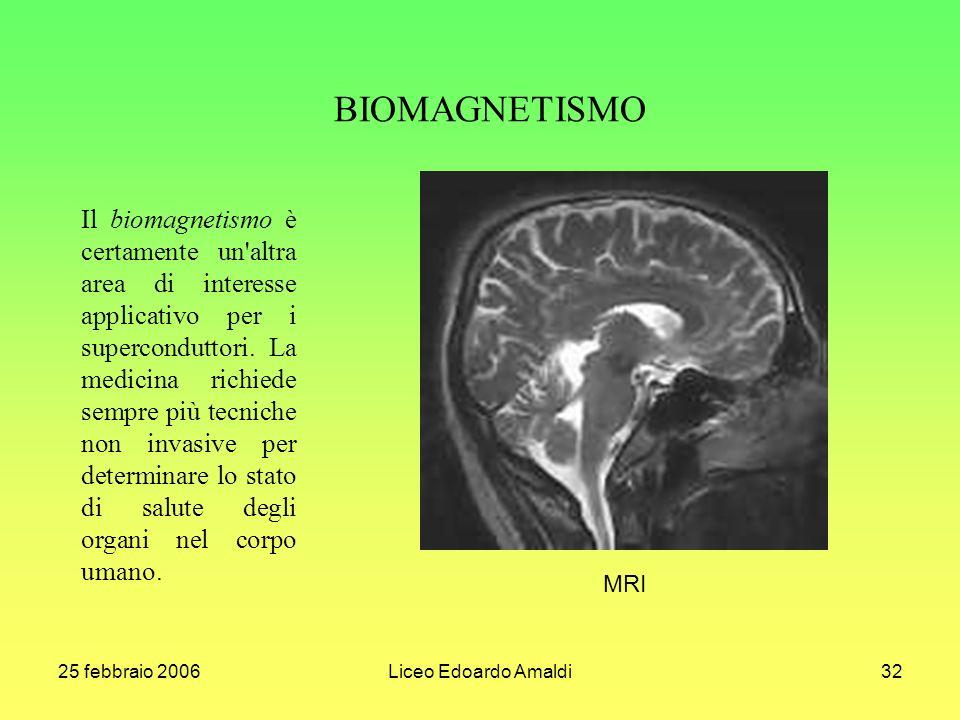 25 febbraio 2006Liceo Edoardo Amaldi32 Il biomagnetismo è certamente un altra area di interesse applicativo per i superconduttori.