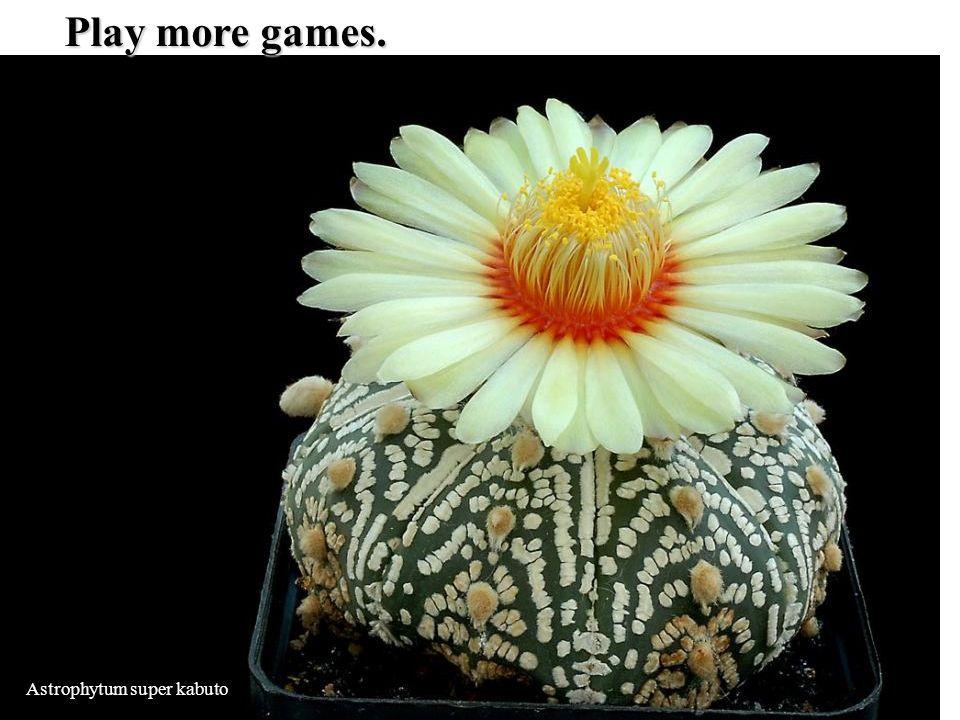 Astrophytum super kabuto Play more games.
