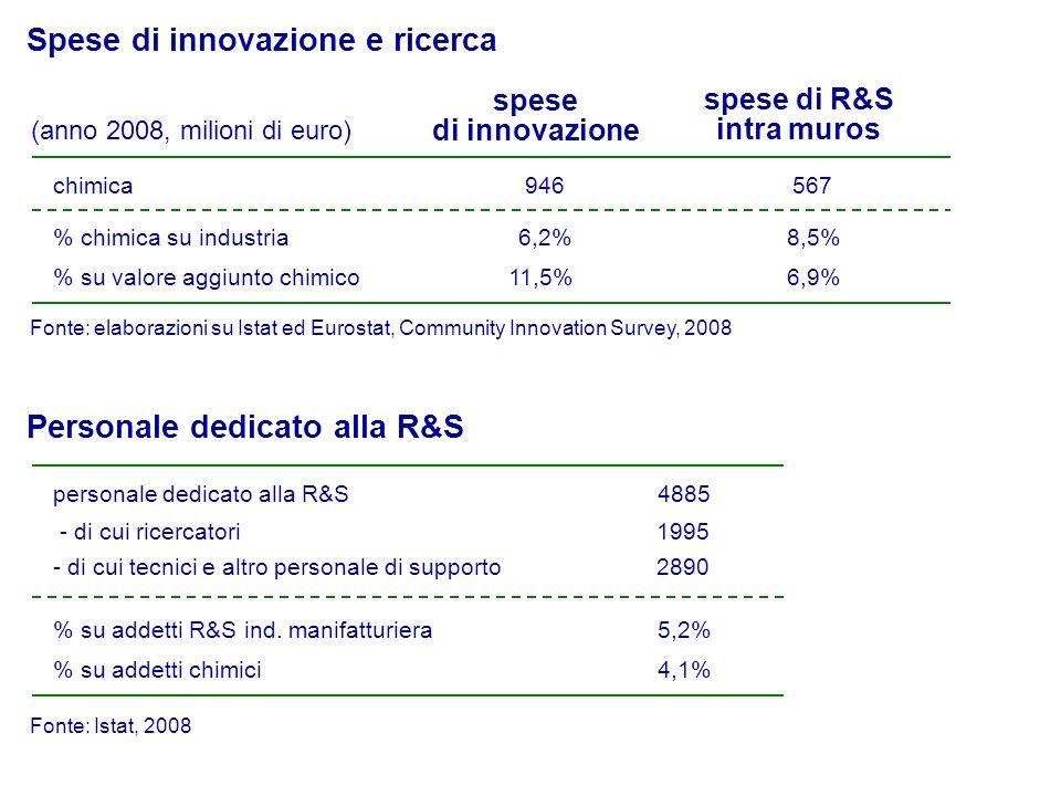 1995 2890 Personale dedicato alla R&S Fonte: Istat, 2008 - di cui ricercatori - di cui tecnici e altro personale di supporto 4885personale dedicato alla R&S 5,2% su addetti R&S ind.
