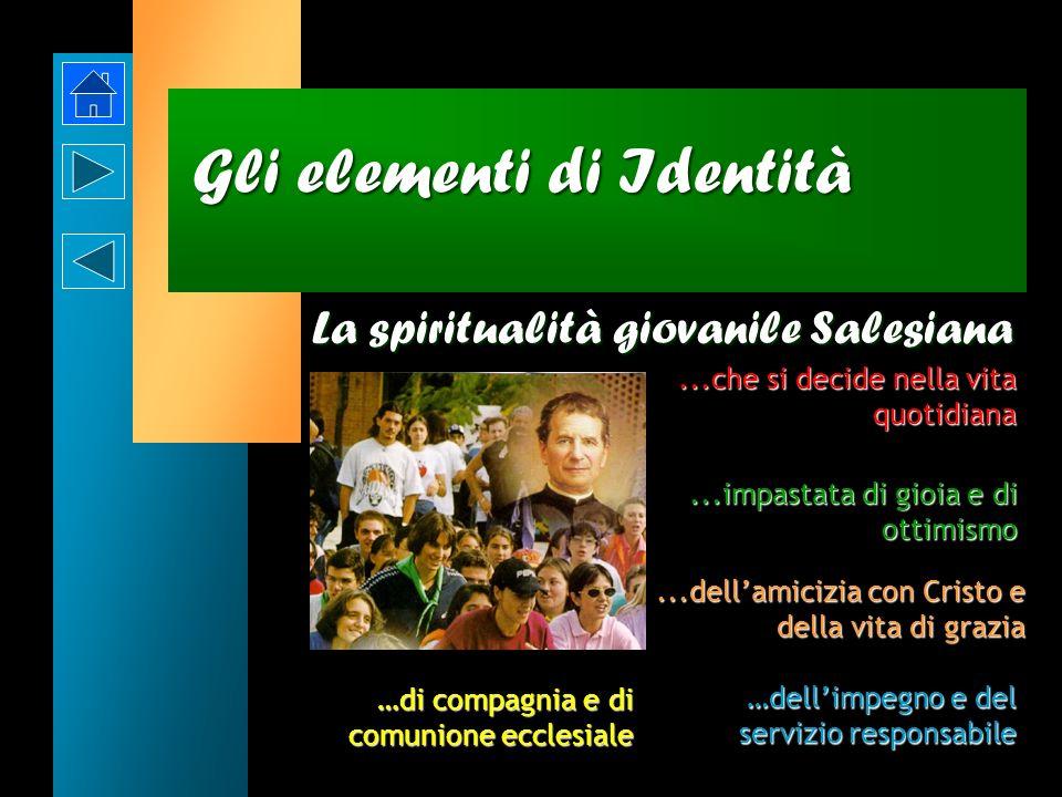 Gli elementi di Identità Gli elementi di Identità Don Bosco è stato definito dal Papa maestro di spiritualità giovanile, perché ha saputo rendere vivo