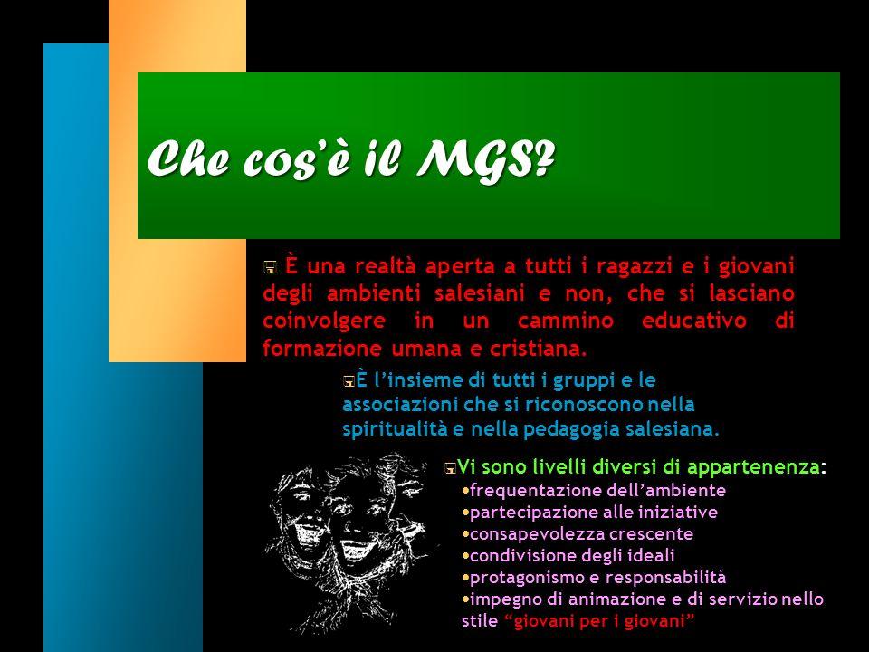 Italia M.G.S. Movimento Giovanile Salesiano