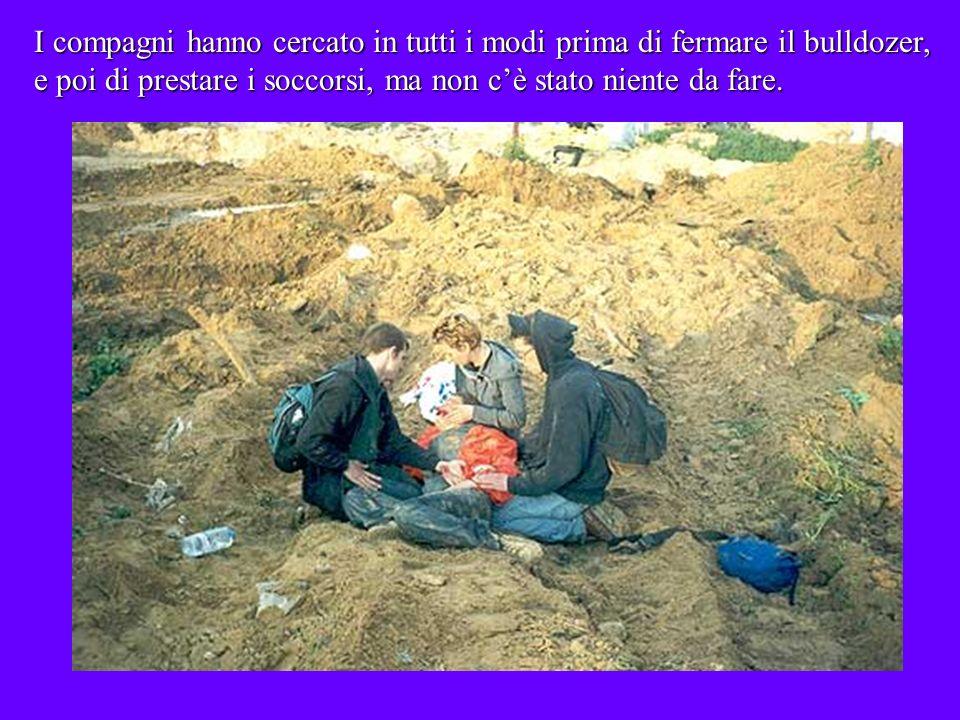 Rachel Corrie a soli 23 anni ha perso la vita, mentre difendeva, con il proprio corpo e le sue idee, il diritto dei cittadini palestinesi ad avere unabitazione ed una terra.