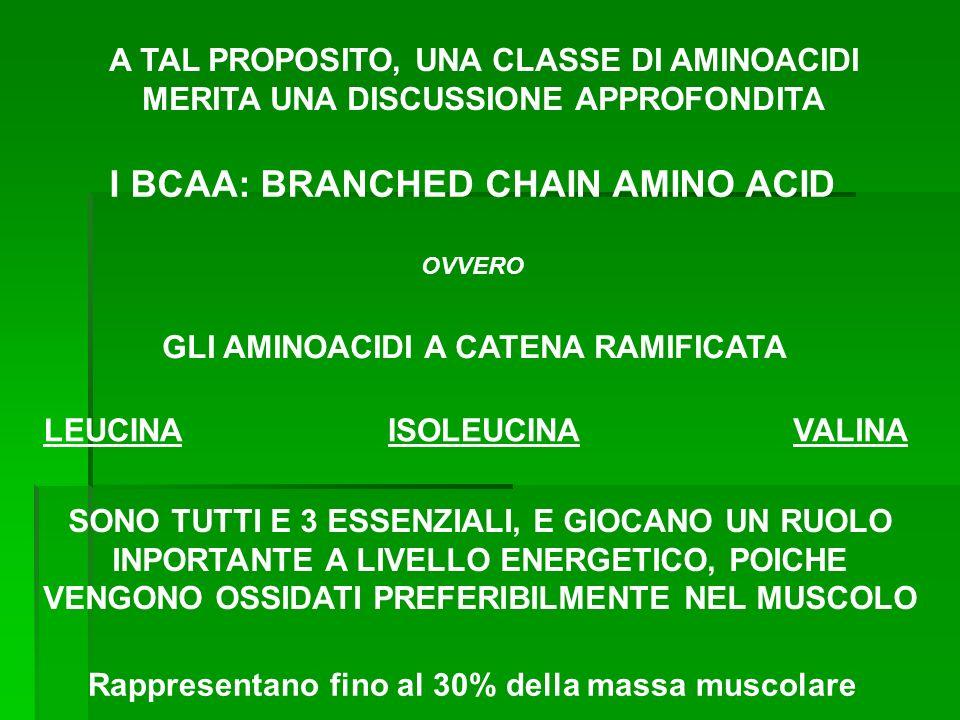 Aminoacidi chetogenici e glucogenici GlicinaGlucogenico AlaninaGlucogenico ValinaGlucogenico LeucinaChetogenico Isoleucina Cheto-glucogenico ProlinaGlucogenico Fenilalanina Tirosina Triptofano SerinaGlucogenico TreoninaGlucogenico CisteinaGlucogenico MetioninaGlucogenico AsparaginaGlucogenico GlutaminaGlucogenico AspartatoGlucogenico GlutammatoGlucogenico LisinaChetogenico ArgininaGlucogenico IstidinaGlucogenico