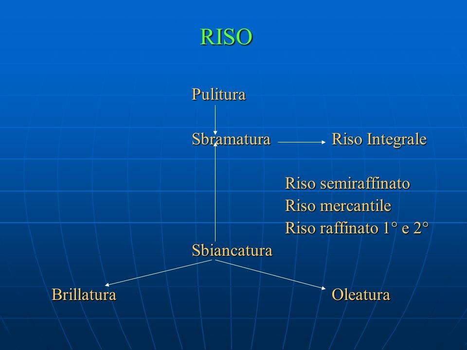 RISO Pulitura SbramaturaRiso Integrale Riso semiraffinato Riso mercantile Riso raffinato 1° e 2° Sbiancatura BrillaturaOleatura