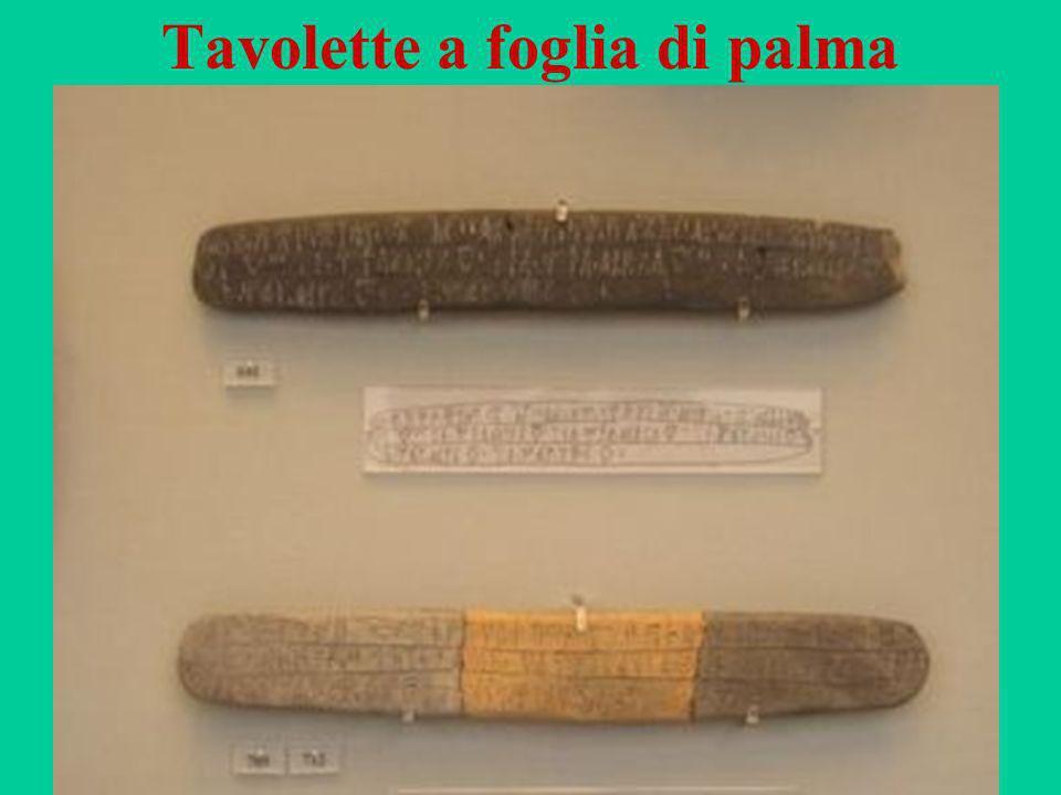 52 Tavolette a foglia di palma