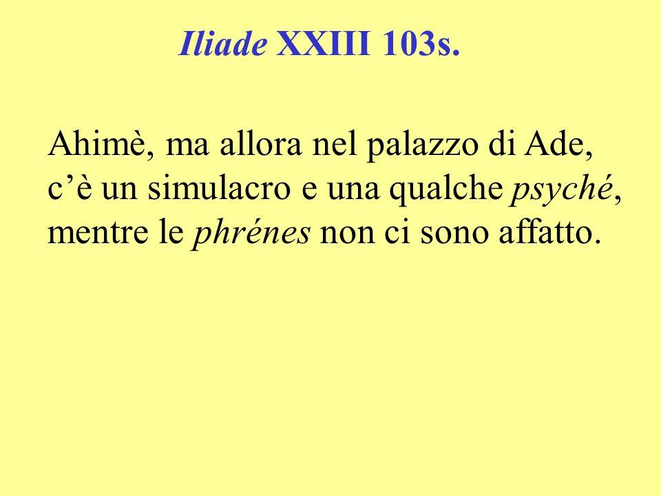 Iliade XXIII 103s. Ahimè, ma allora nel palazzo di Ade, cè un simulacro e una qualche psyché, mentre le phrénes non ci sono affatto.
