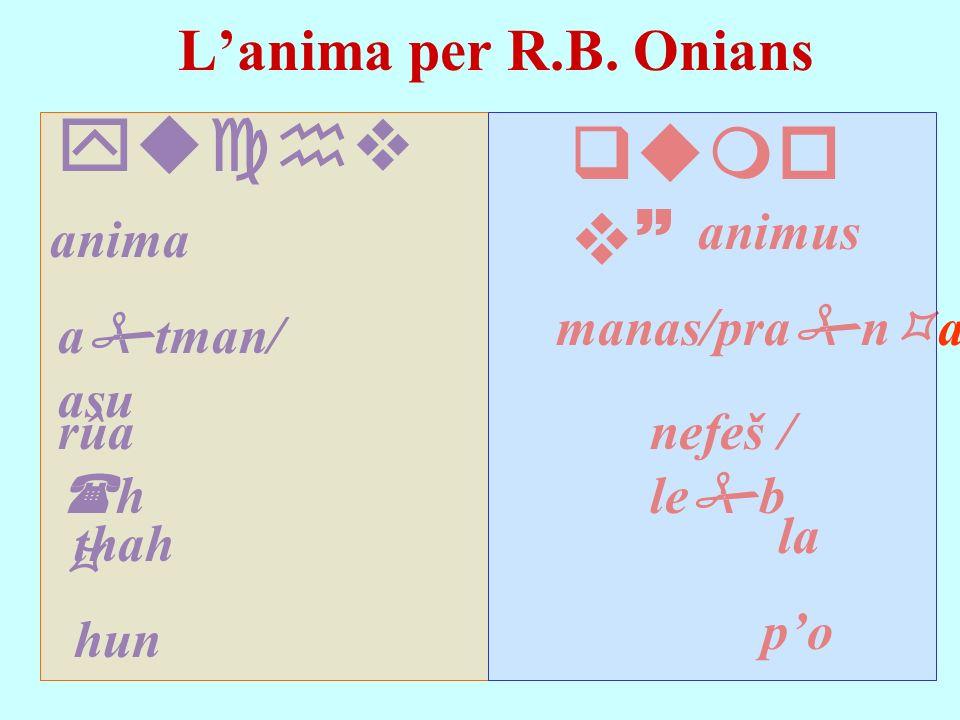Lanima per R.B. Onians yuchv anima rûa h a tman/ asu hun animus qumo v~ manas/pra n a po nefeš / le b la thah
