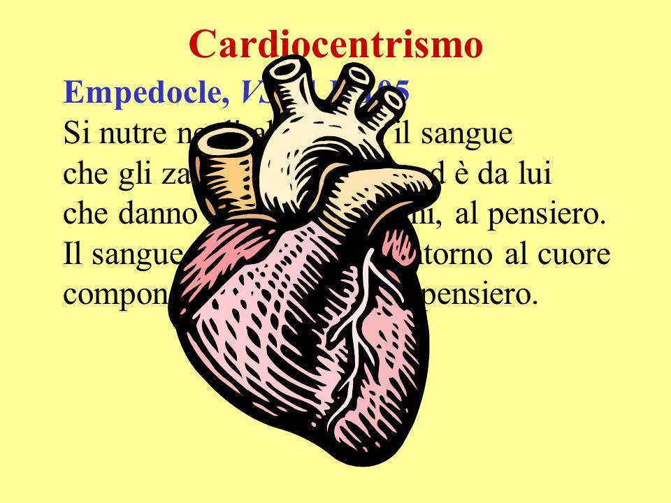 Cardiocentrismo Empedocle, VS 31 B 105 Si nutre negli abissi con il sangue che gli zampilla incontro, ed è da lui che danno nome, gli uomini, al pensi