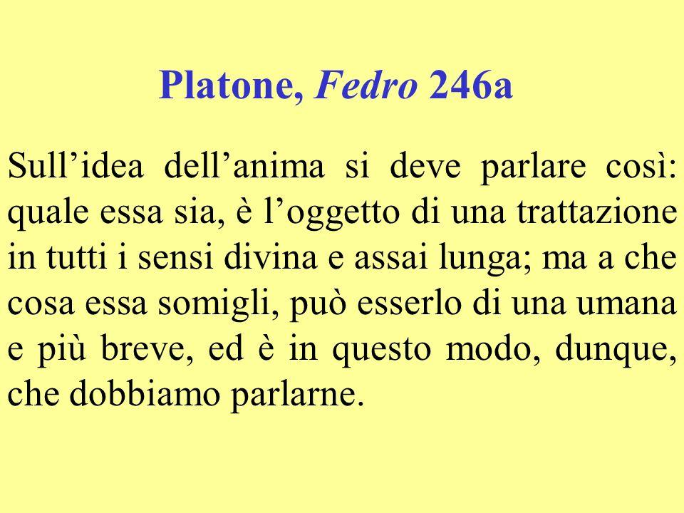 Lanima dellanima Lucrezio, La natura III 273-281 Davvero nel profondo si nasconde, / insinuandovisi, questa natura, / è non cè nulla dentro al nostro corpo / di più interno di lei, che a propria volta / può dirsi lanima di tutta lanima.