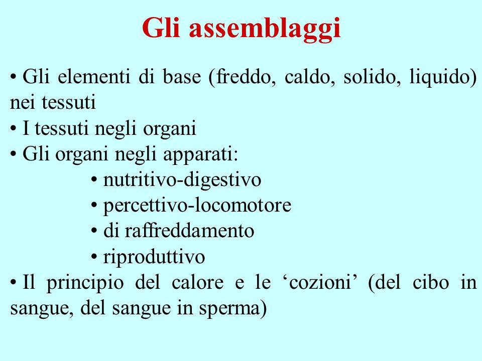Gli assemblaggi Gli elementi di base (freddo, caldo, solido, liquido) nei tessuti I tessuti negli organi Gli organi negli apparati: nutritivo-digestiv