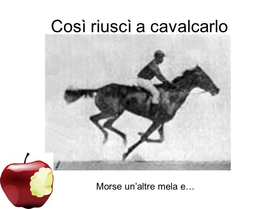 Morse unaltra mela