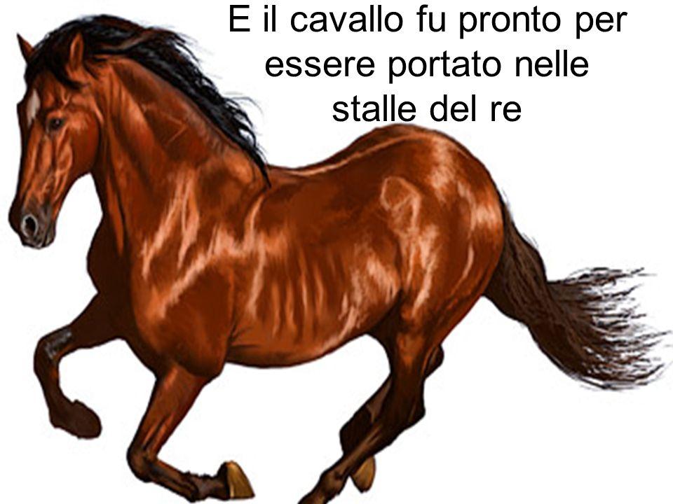 …e il cavallo imparò a impennare. Morse unaltra mela e…