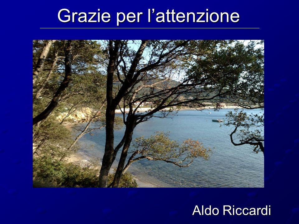 Aldo Riccardi Grazie per lattenzione