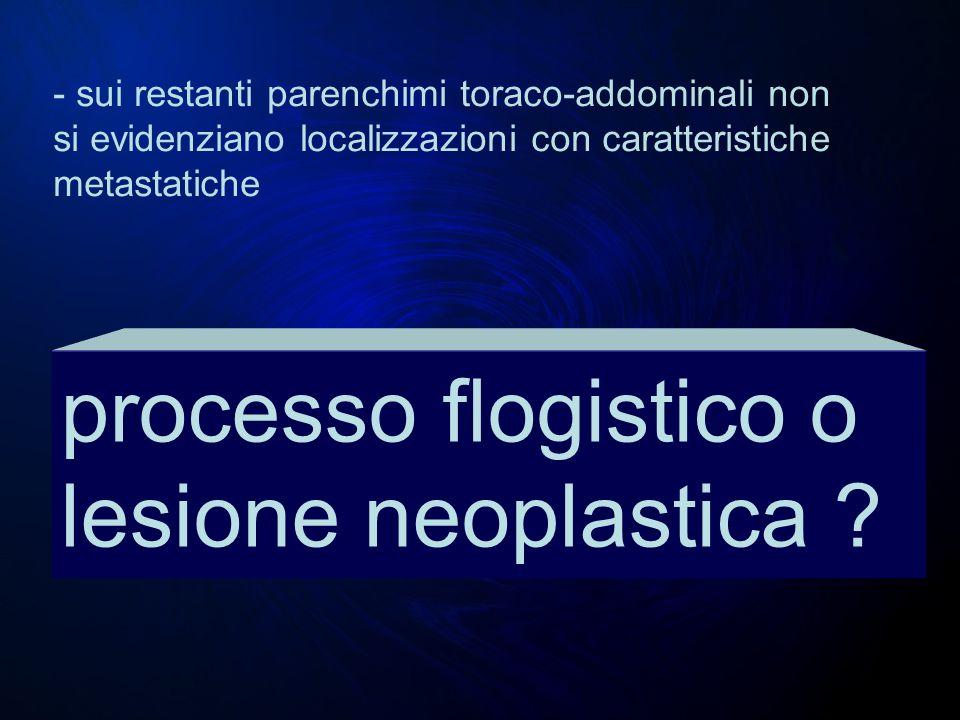 processo flogistico o lesione neoplastica ? - sui restanti parenchimi toraco-addominali non si evidenziano localizzazioni con caratteristiche metastat