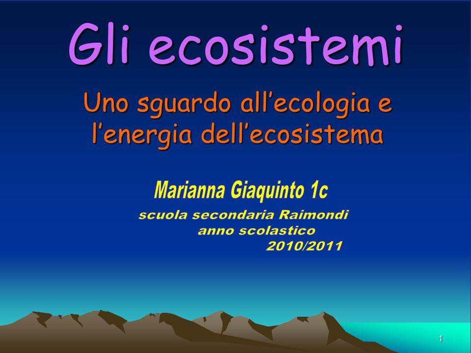 1 Gli ecosistemi Uno sguardo allecologia e lenergia dellecosistema