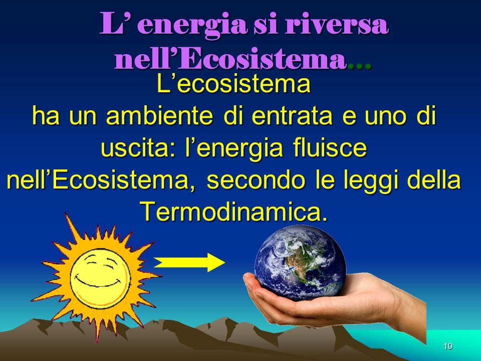 10 L energia si riversa nellEcosistema … Lecosistema ha un ambiente di entrata e uno di uscita: lenergia fluisce nellEcosistema, secondo le leggi dell