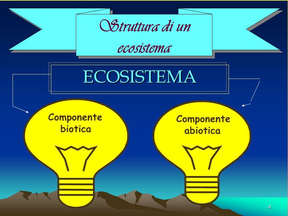 5 Compomente biotica È la parte biologica dellecosistema È formato da tutti gli organismi, vegetali, animali o microrganismi viventi in un insieme integrato, in una data area di un ecosistema