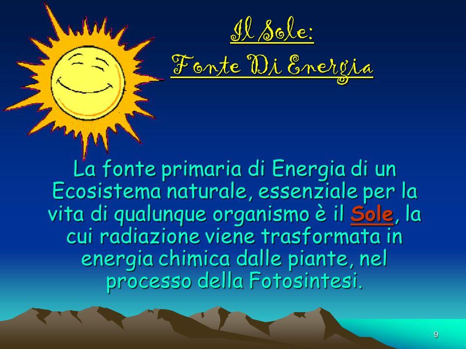 9 Il Sole: Fonte Di Energia La fonte primaria di Energia di un Ecosistema naturale, essenziale per la vita di qualunque organismo è il Sole, la cui ra