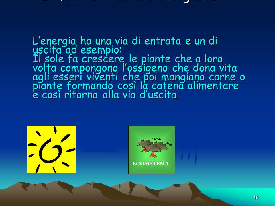 10 Le fonti che donano energia ….. Lenergia ha una via di entrata e un di uscita ad esempio: Il sole fa crescere le piante che a loro volta compongono