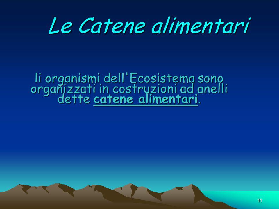 11 Le Catene alimentari li organismi dell'Ecosistema sono organizzati in costruzioni ad anelli dette catene alimentari.