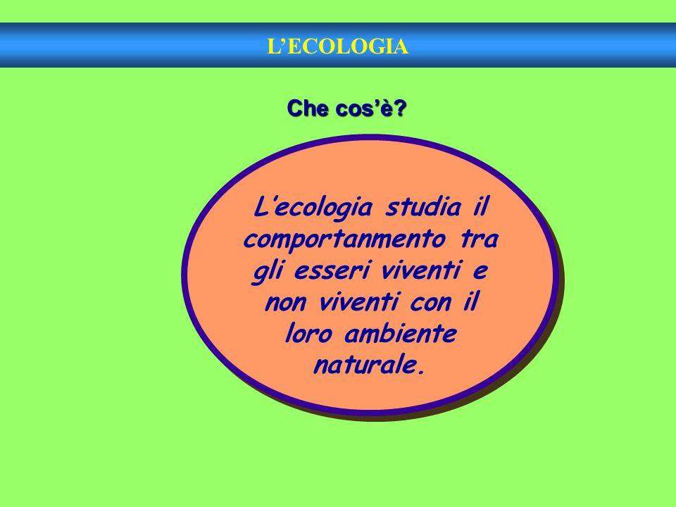 LECOLOGIA Che cosè? Lecologia studia il comportanmento tra gli esseri viventi e non viventi con il loro ambiente naturale.