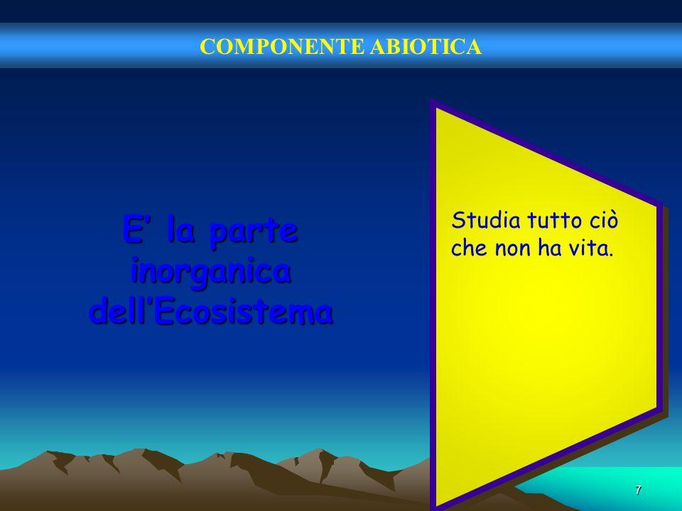 7 COMPONENTE ABIOTICA E la parte inorganica dellEcosistema Studia tutto ciò che non ha vita.