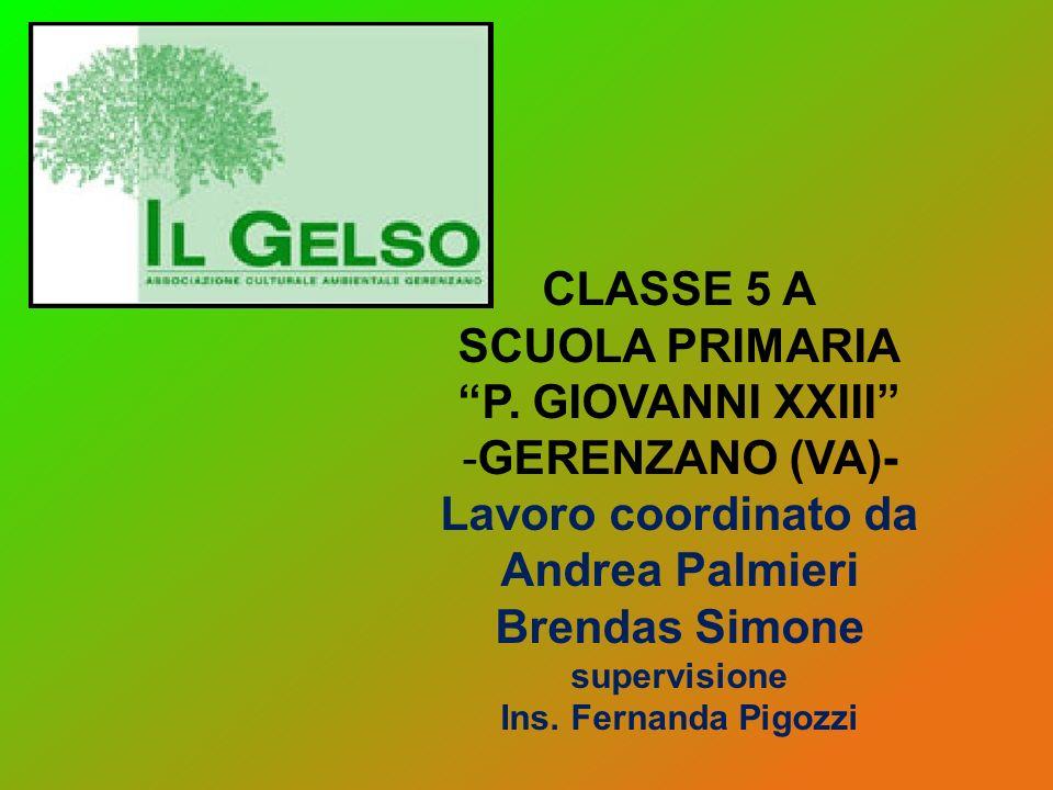 CLASSE 5 A SCUOLA PRIMARIA P. GIOVANNI XXIII -G-GERENZANO (VA)- Lavoro coordinato da Andrea Palmieri Brendas Simone supervisione Ins. Fernanda Pigozzi