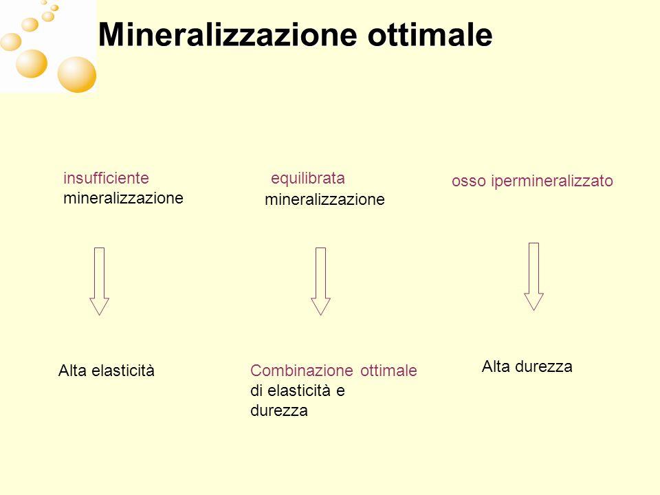 equilibrata mineralizzazione insufficiente mineralizzazione osso ipermineralizzato Combinazione ottimale di elasticità e durezza Alta elasticità Alta