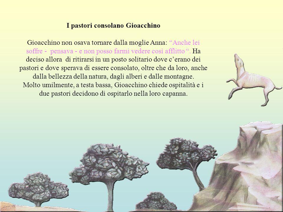 I pastori consolano Gioacchino Gioacchino non osava tornare dalla moglie Anna: Anche lei soffre - pensava - e non posso farmi vedere così afflitto.