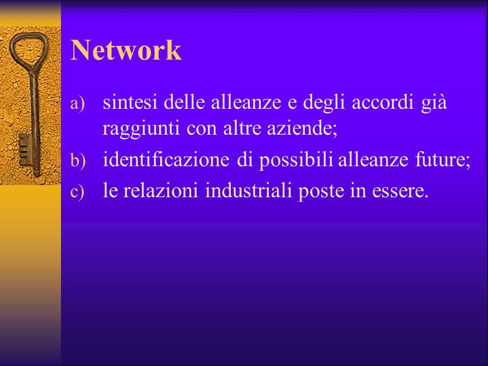 Network a) sintesi delle alleanze e degli accordi già raggiunti con altre aziende; b) identificazione di possibili alleanze future; c) le relazioni in