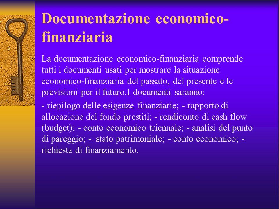 Documentazione economico- finanziaria La documentazione economico-finanziaria comprende tutti i documenti usati per mostrare la situazione economico-f