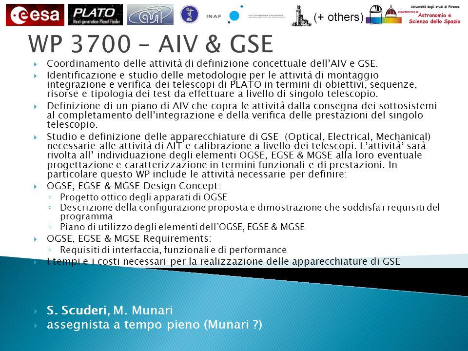 (+ others) WP 3700 – AIV & GSE Coordinamento delle attività di definizione concettuale dellAIV e GSE.