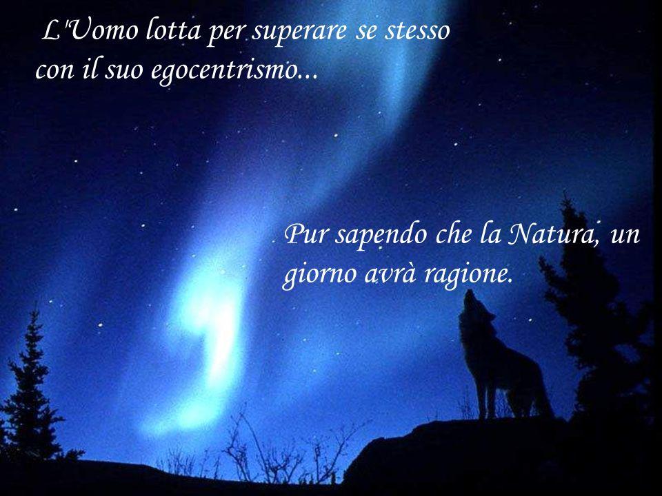 Perché mentre nella Natura la lotta è per la conservazione della specie...
