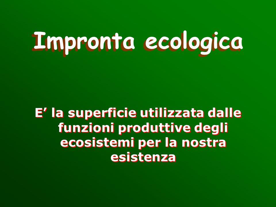 Impronta ecologica E la superficie utilizzata dalle funzioni produttive degli ecosistemi per la nostra esistenza E la superficie utilizzata dalle funz