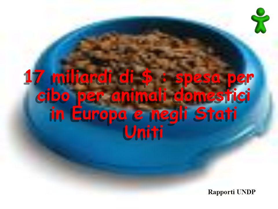Rapporti UNDP 17 miliardi di $ : spesa per cibo per animali domestici in Europa e negli Stati Uniti