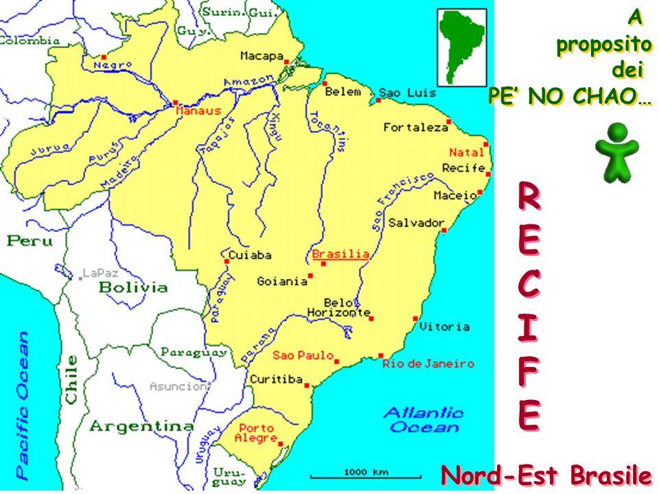 Nord-Est Brasile A proposito dei PE NO CHAO… A proposito dei PE NO CHAO… RECIFERECIFE RECIFERECIFE