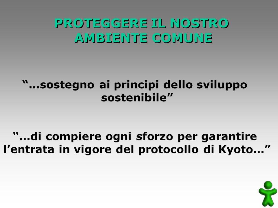 PROTEGGERE IL NOSTRO AMBIENTE COMUNE PROTEGGERE IL NOSTRO AMBIENTE COMUNE...sostegno ai principi dello sviluppo sostenibile...di compiere ogni sforzo per garantire lentrata in vigore del protocollo di Kyoto...