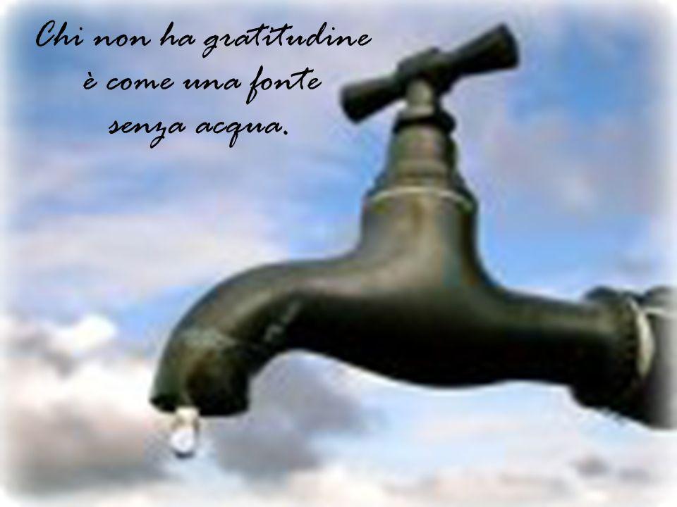 Chi è grato, è amato.